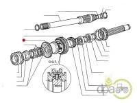 Fiat-Pinioane transmisie-PINION TRANSMISIE